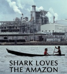 shark_loves_the_amazon